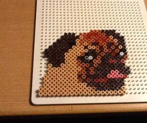pug and hama beads image