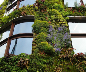 building, nature, and green image