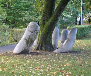 tree, nature, and hand image