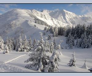 Blanc, mountain, and goldstaraward image