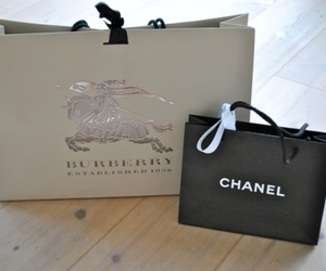 bag, Burberry, and shopping image
