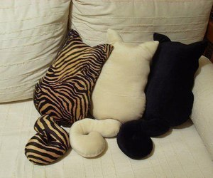cat, pillow, and black image