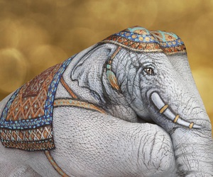 art, elephant, and hand image