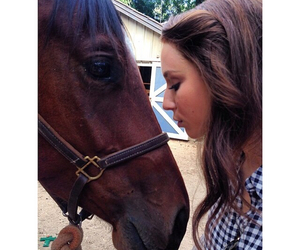 horse, pretty little liars, and troian image