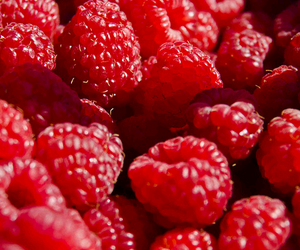 raspberry, fruit, and red image