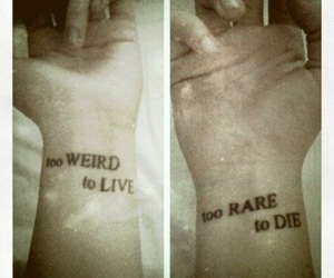 arms, hand, and live image