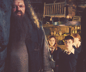 harry potter, hagrid, and hermione granger image