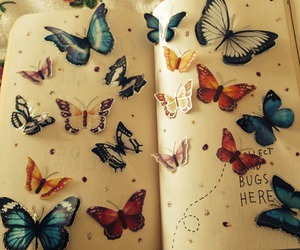 butterfly, mariposas, and wreck this journal image