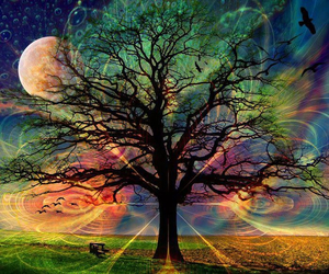 colours, dreamworld, and fullmoon image