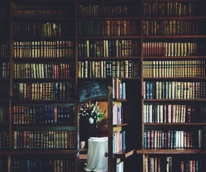 comfort, books, and love image
