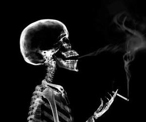 smoke, skeleton, and skull image
