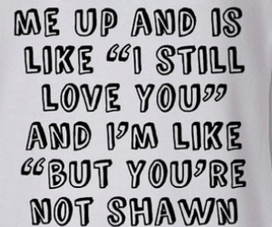 quotes, shawn mendes, and magcon boys image