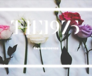 the 1975, indie, and fallingforyou image
