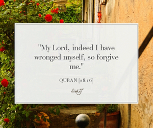 dutch, islam, and quran image