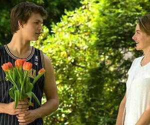 tfios, the fault in our stars, and ansel elgort image