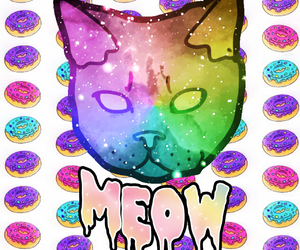 cats, meow, and donuts image