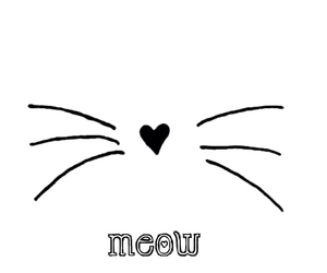 beauty, funny, and meow image