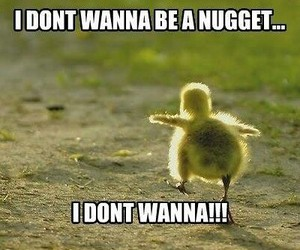 nugget, cute, and Chicken image