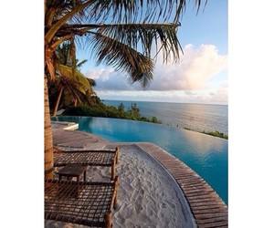 beach, palm trees, and beautiful image