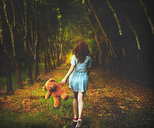 fantasy, teddy bear, and forest image