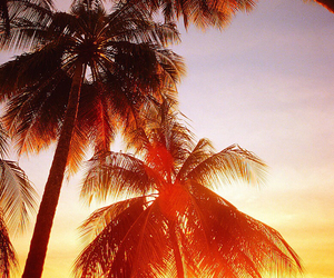 evening, paradise, and romantic image