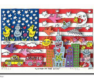 america, bird, and flag image