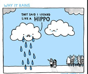 clouds, rain, and hippo image