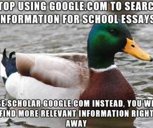 advice, college, and duck image