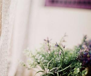 Image by céline ☾