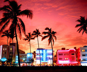 Miami, city, and summer image