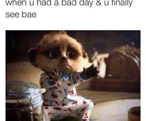 bae, funny, and bad day image