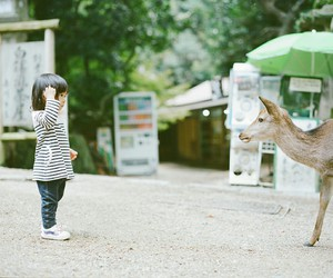 child, japan, and nature image