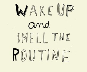 smell the routine image