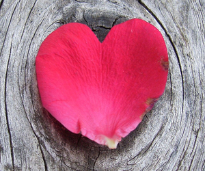 love and nature image