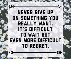 sprüche and never give up image