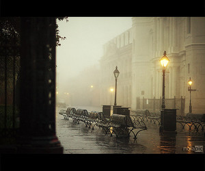 autumn, fog, and new orleans image