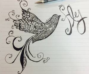 drawing, beauty, and bird image