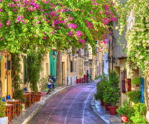 flowers, street, and Greece image