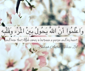 allah, qoutes, and quotes image