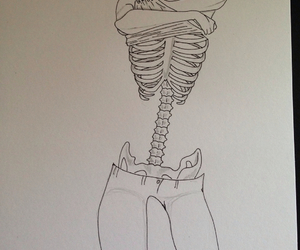 body, bones, and drawing image