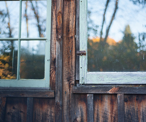 window, autumn, and tree image