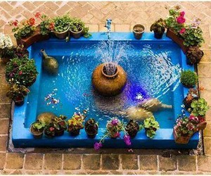 blue, flowers, and iran image