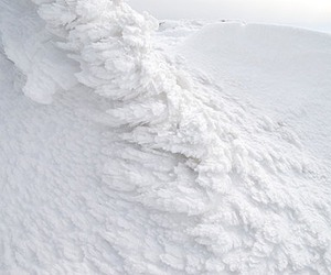 white and snow image