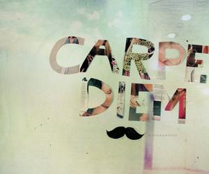 carpe diem, mustache, and moustache image