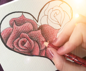 rose, drawing, and heart image