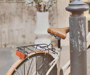 bike, vintage, and flowers image