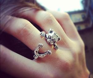 ring, accessories, and dog image