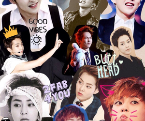Collage, exo, and kpop image