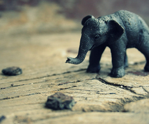 elephant, miniature, and toy image