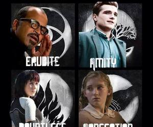 divergent, amity, and the hunger games image